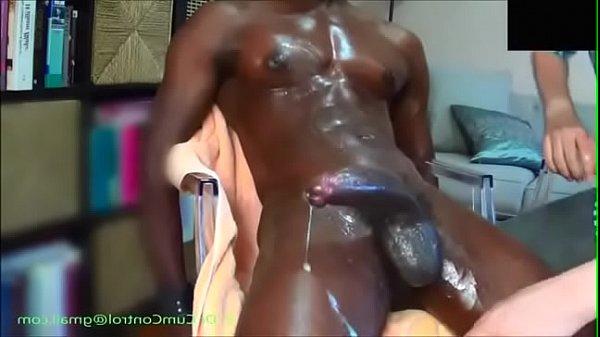 Huge Black Cock Gay